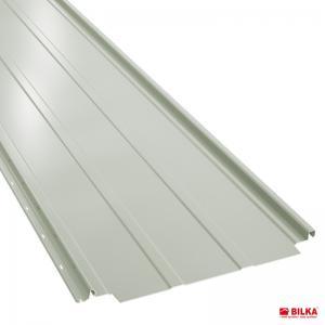 RAL 9002 alb LUCIOS